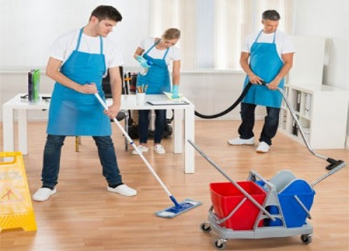 Hire a Professional Carpet Cleaning Company